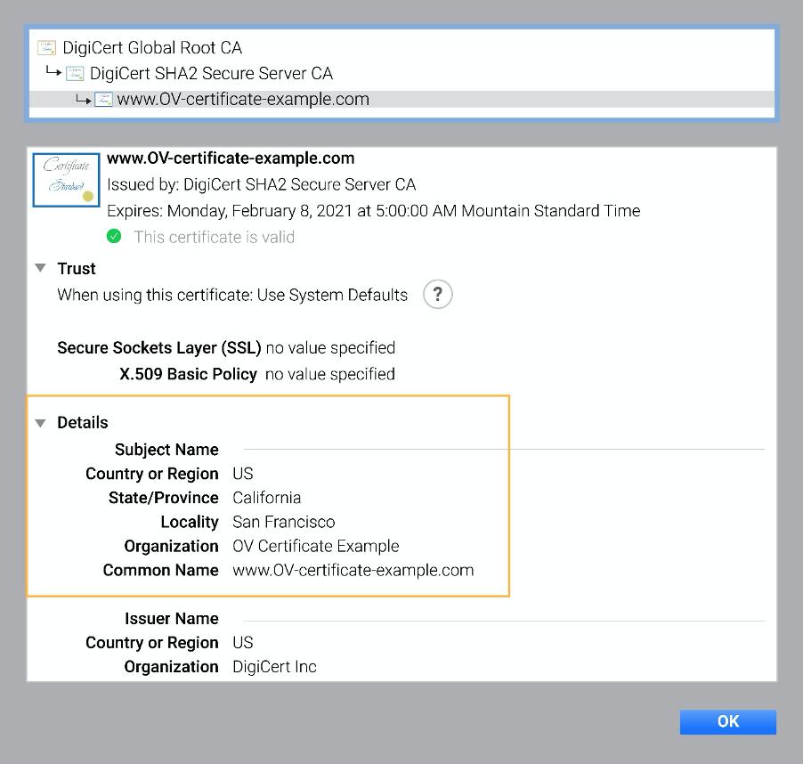 Chrome 中的 OV 证书示例